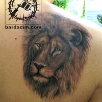 lion-tattoo.jpg